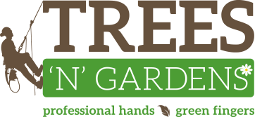 TreesnGardens – Professional Hands, Green Fingers